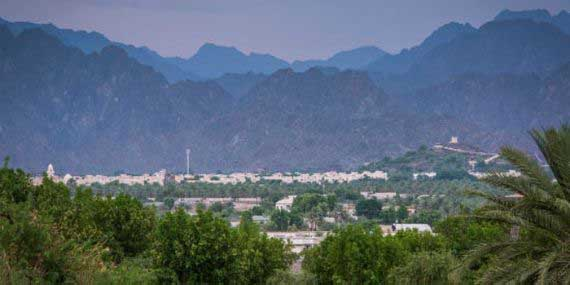 Visit Hatta Date Farms